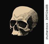 white skull in grunge design... | Shutterstock . vector #309526688
