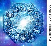 astrology wheel with signs... | Shutterstock . vector #309548996