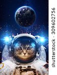 Stock photo beautiful cat in outer space elements of this image furnished by nasa 309602756