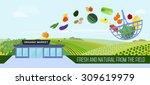 organic market concept. vector... | Shutterstock .eps vector #309619979