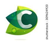 c letter with green leaves and... | Shutterstock .eps vector #309624920