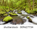gorton creek through lush... | Shutterstock . vector #309627734