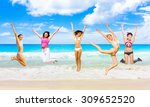 flying beauties on a beach  | Shutterstock . vector #309652520