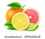 Isolated Citrus Fruits. Lemon...