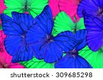beautiful multicolor pattern... | Shutterstock . vector #309685298