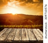 golden sunset time and big worn ... | Shutterstock . vector #309710576