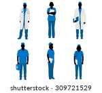 vector illustration  of a six... | Shutterstock .eps vector #309721529
