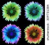 flower  black background... | Shutterstock . vector #309731384