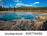 sapphire pool  biscuit basin ... | Shutterstock . vector #309770450