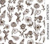 wildflowers. hand drawn doodles ... | Shutterstock .eps vector #309782924