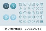 collection of 30 geometric... | Shutterstock .eps vector #309814766