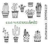 hand drawn succulent and...   Shutterstock .eps vector #309906119
