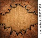 cracked wooden board | Shutterstock . vector #309929954