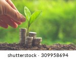 money and plant with hand with...   Shutterstock . vector #309958694