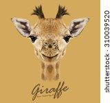 Giraffe Animal Face. Vector...