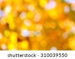 Autumn Abstract  Fall Season...