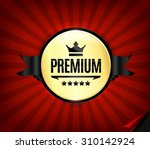 golden and black premium high... | Shutterstock .eps vector #310142924