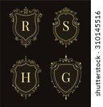set of luxury premium stylish... | Shutterstock .eps vector #310145516