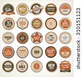 premium  quality retro vintage... | Shutterstock .eps vector #310151123