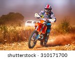 koster  south africa   july 11  ... | Shutterstock . vector #310171700