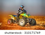 koster  south africa   july 11  ... | Shutterstock . vector #310171769