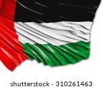 united arab emirates flag with... | Shutterstock . vector #310261463