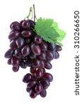 fresh ripe grapes  isolated on... | Shutterstock . vector #310266650