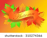 autumn background with leaves   Shutterstock .eps vector #310274366