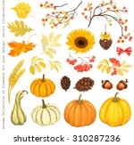 autumn collection of elements... | Shutterstock .eps vector #310287236