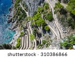 patch on a capri island in a... | Shutterstock . vector #310386866