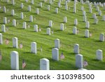 Rows Of Tombstones With...