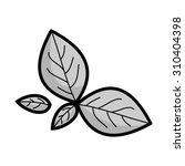 fresh green leaves of basil and ... | Shutterstock . vector #310404398