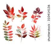 set of autumn leaves | Shutterstock . vector #310414136