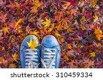 Autumn Season In Hipster Style...