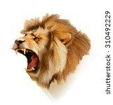 Stock vector roaring lion head vector illustration 310492229