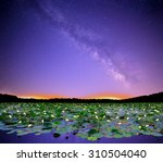 Small photo of The Milky Way over Seneca Lake, Ohio with beautiful American Lotus flowers (Nelumbo lutea) in the foreground.