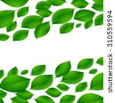 realistic green leaves isolated ...   Shutterstock .eps vector #310559594