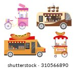 street food and fast food... | Shutterstock . vector #310566890