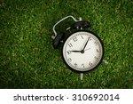 Alarm Clock On Grass