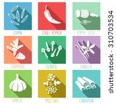 fresh herbs and spices icon set.... | Shutterstock .eps vector #310703534