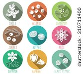 fresh herbs and spices icon set....   Shutterstock .eps vector #310711400