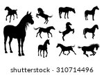 a set of high quality detailed... | Shutterstock . vector #310714496