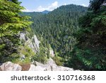 Small photo of Mountain landscape with an afforested valley