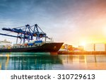 containers loading by crane in... | Shutterstock . vector #310729613