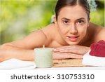 summer. | Shutterstock . vector #310753310