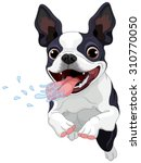 Stock vector illustration of cute boston terrier 310770050