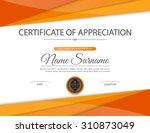 vector certificate template. | Shutterstock .eps vector #310873049