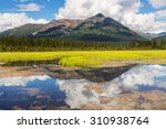 serenity lake in tundra on... | Shutterstock . vector #310938764
