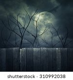 spooky forest with full moon ... | Shutterstock . vector #310992038