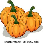 cartoon pumpkin | Shutterstock . vector #311057588